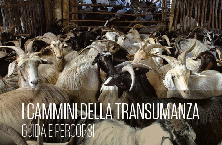 I cammini della transumanza